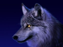 Wolf7115