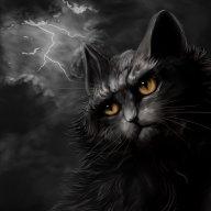 Meowlan